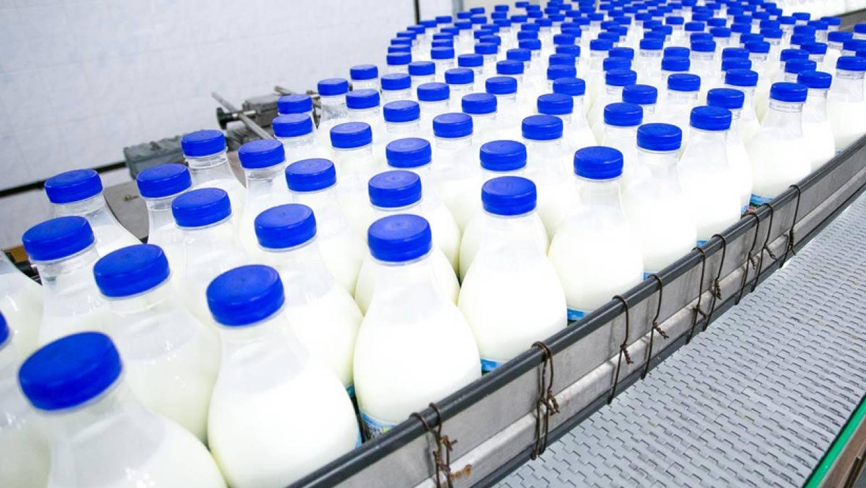 Engineering leva inteligência de dados para a indústria láctea.